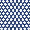 Blue-White-Dot-Bathroom-Curtain