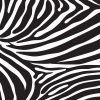 Zebra-Black-White-kid