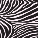 Zebra-Curtains-Printed