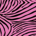Zebra-Window-Pattern
