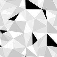 Geometric-Black-White