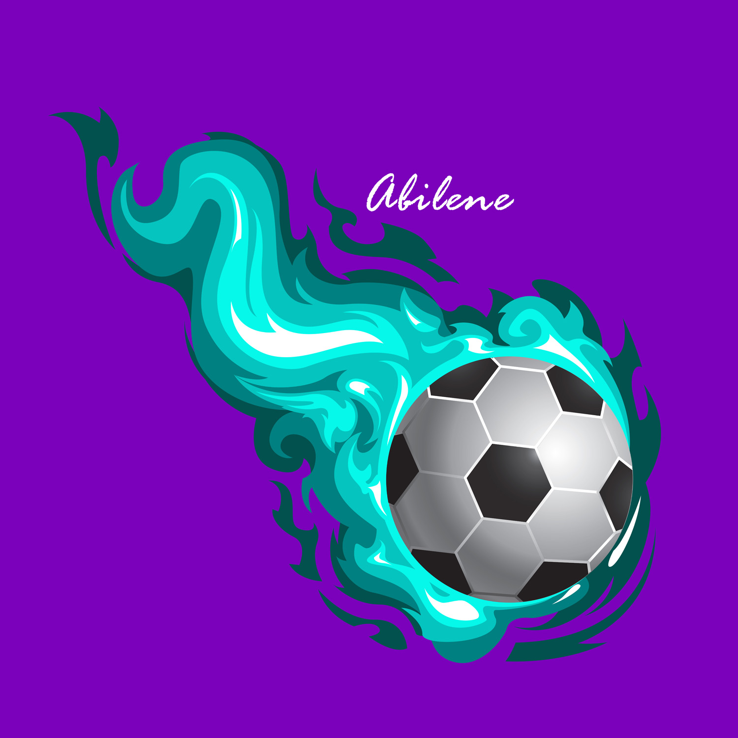 Soccer Bedding For Girls With Teal Flames Amp Purple