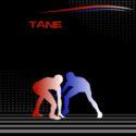 #390_Wrestling