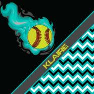 #391_Softball