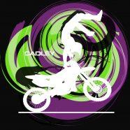 #203_Motocross_WC