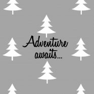 Adventure Awaits Pillowcase